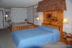 Michigan-vacation-hotels-resorts-shack-71